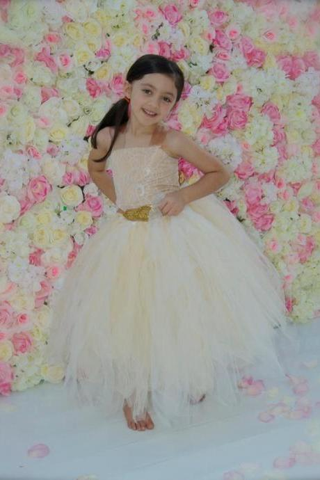 flower girl dress, tutu flower girl dress, champaign flower girl dress, gold flower girl dress, flower girl, tutu dress, girls dress xk77 (1)